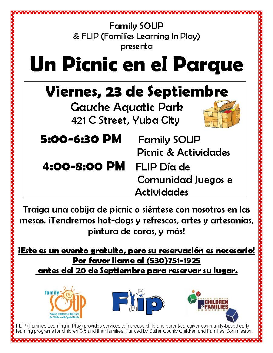 Picnic Flyer Spanish